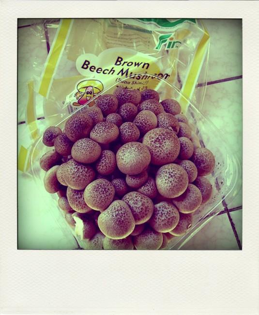brown-beech-mushrooms-pola