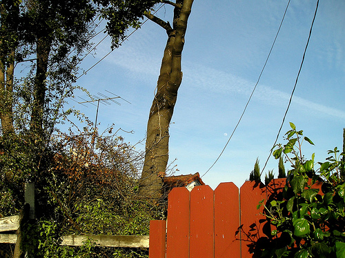 fence-moon-and-tv-antenna